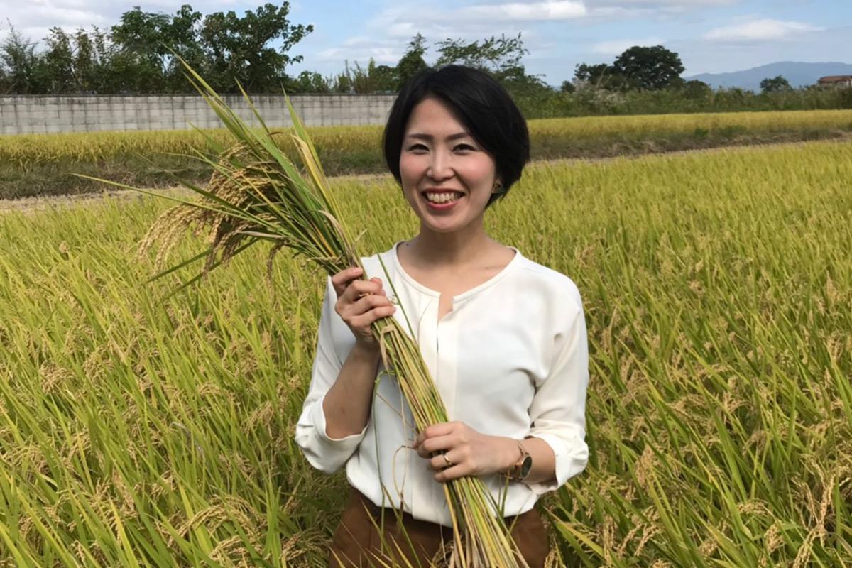 お米とみどり